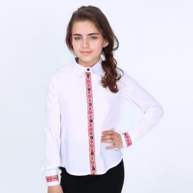 87179a5d33e Школьные Блузки и Рубашки для девочкек купить недорого по цене ...